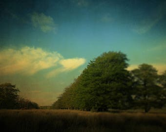 Nature Photography, Summer Art Print, blue, green, Line of Trees, Brown Fields, Clouds, Countryside