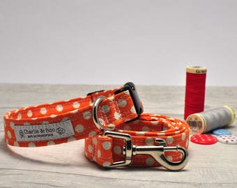 Dog collar and lead - Dog collar and leash - Orange dog collar - Orange dog lead - Spotty collar and lead - Puppy collar and lead