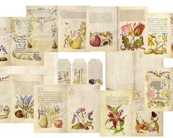 Vintage Scribe & Painter #2 digital journal kit