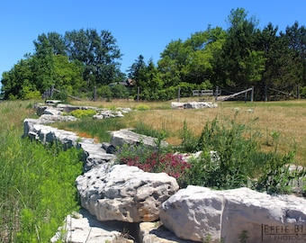 Garden Photography, White Rocks, Cottage Wall Art, Summer Photography, Summer Nature Wall Decor, Summer Trees Landscape, Fine Art Print