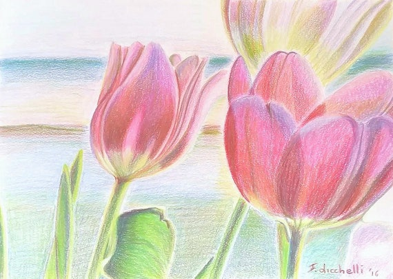 Colored pencils, drawing, tulips, floral picture, romantic gift idea for her, little girl birth, bedroom decoration, shabby chic style.