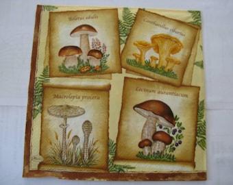 set of 2 mushrooms of various autumn paper napkins