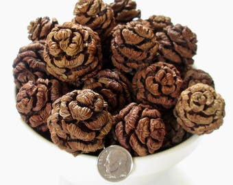 72 Sequoia Pine Cones Pods, Wreaths Crafts Hobby Crafting Ornament Holiday Tree Type 2