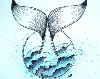 Whale Tail Illustration