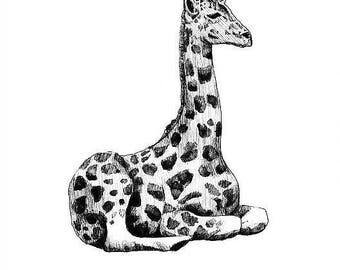 Giraffe Print - Mounted