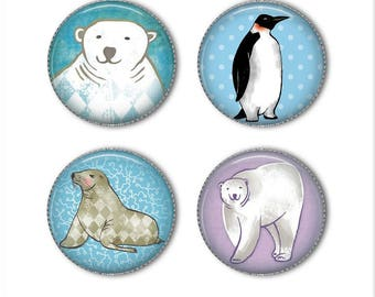 Winter animals magnets or pins, Polar bear, Penguin, Seal, refrigerator magnets, fridge magnets, office magnets