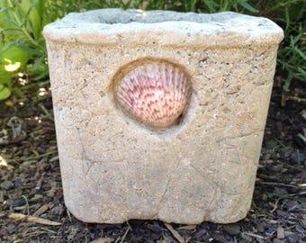 Small Square Hypertufa Planter/Pot/Succulent Planter/Pot/Container, Herb Planter/Pot, Shell planter/Shell Pot/Indoor/Outdoor planter/pot