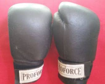 Boxing Gloves (Training or Speed Bag) Used