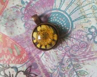 Real Yellow Daisy flower pendant