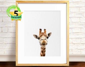 Giraffe Print, Nursery Animal Print, Giraffe Photo, Safari Animal Print, Giraffe Wall Art, Large Poster, Babies Room Prints, Nursery Safari