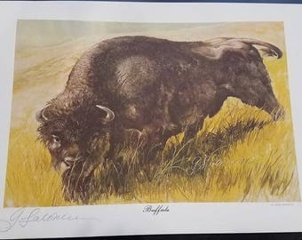 George Solonevich signed print Buffalo