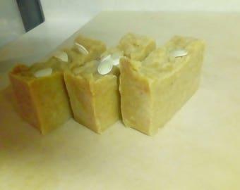 Pumpkin Soap