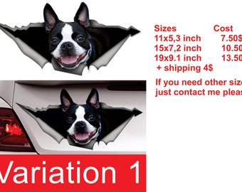 Boston Terrier decal,  dog car decal, Vinyl decal, car decoration, boston terrier  sticker, pet decal