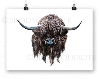 Highland Cow art. Wee Hamish the Scottish Heilan Coo Giclee Print, illustration, animal art. Colourful Cow on White Background.