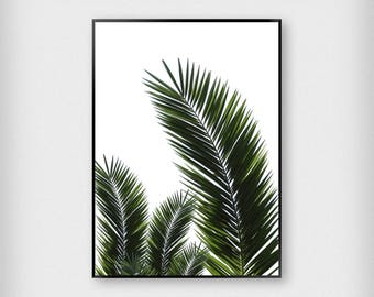 Three Leaves Print | Botanical | Green | Tropical - Palm Tree - Poster