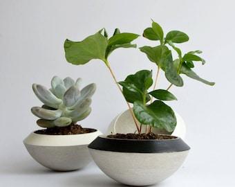 Concrete Planter, Color Planter, White Planter, Black Planter, Succulent Pot, Colored Pot, White succulent pot, Gardening, Home Decor, Love
