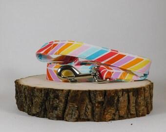 Dog Leash/ Fabric Dog Leash/ Bright Dog Leash/ Rainbow Dog Leash/ Dog Accessories
