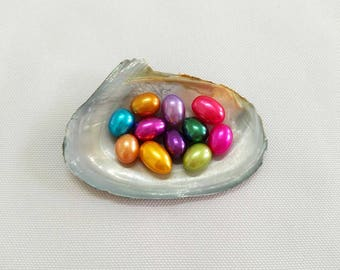 10pcs 6-8mm oval freshwater pearl oysters,hot pink,red,blue,orange,yellow,green,champagne,brown,black,bulk,wholesale,TSNOT-FO-MIX