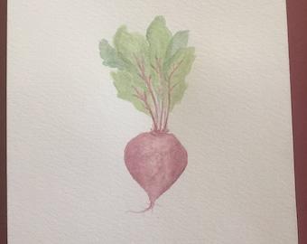 Watercolor Beet-8x10