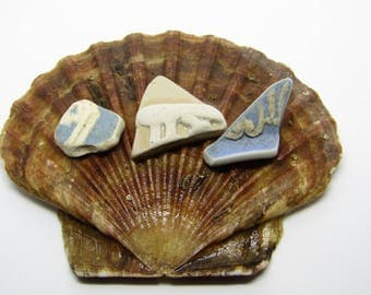 3  Wedgewood/Jasperware Type Scottish Sea Pottery Shards Vintage Sea Pottery jewellery/art supplies with a seaside beach nautical theme
