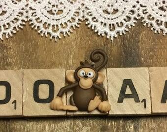 Monkey Photo Magnet, Regrigerator Magnet, Magnet