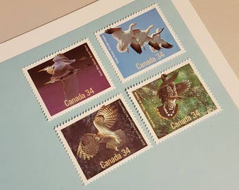 4 Canadian Mint Postage stamps, Birds of Canada Vintage Stamp Set, Unused Canadian stamp lot (e427)