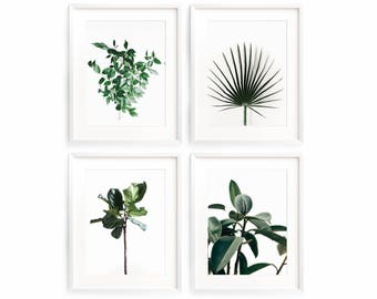 Botanical Art Set, Botanical Leaves Prints, Scandinavian Print Set, Botanical Prints, Palm Leaf Print Set, Printable Wall Art, Gallery Wall