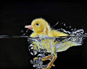 Duckling (Original oil painting on canvas 25 X 35 cm