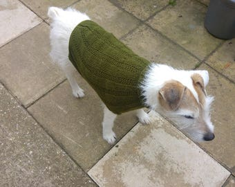 Hand knitted aran dog jumper in green  modelled by Penny a Parsons Jack Russell