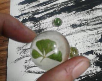4 leaf Clover mold