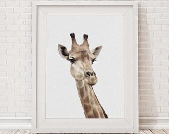 Giraffe Print, Giraffe Wall Art, Nursery Decor, Nursery Animal Print, Safari Nursery Art, Nursery Printable, Nursery Wall Art, Giraffe photo