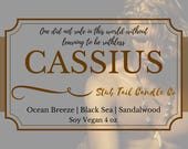 Fiver Friday Special - Cassius - Scented Soy Candle Inspired by Roar