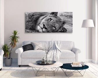 Lion Canvas Resting Cat Black White Animals Panorama Wall Art Picture Home Decor