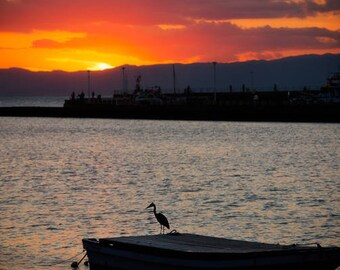 Crane at Sunset in Fujisawa: 2 piece canvas collection