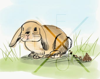 Bunny Illustration - Poo Collection (Rabbit, Bunny, Easter, Poop, Wall Art, Home Decor, Print, Frame it, Cute, Bathroom Art)