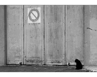 "Fine Art black and white 30 x 45 numbered, signed ""Ker cat"""