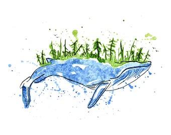 Blue Whale Fine Art Print- WEST COAST Vancouver Island Decor
