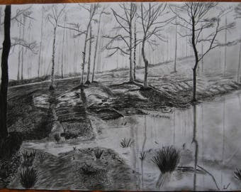 Original A3 Charcoal Drawing Listed by Self-Representing Artist, Forest Lake