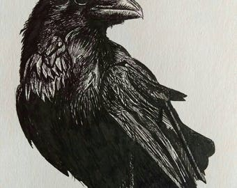 "Raven, bird of prey Giclee art print from original black and white pen and ink artwork by Ruth Dagger in 8""x10"""