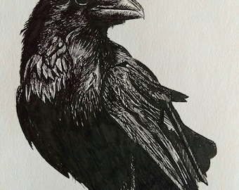 Raven print from original artwork.  Black and white pen drawing.