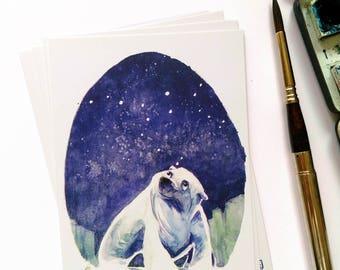 "5 x POSTCARD - Polar bear#3 - ""ursa major"""