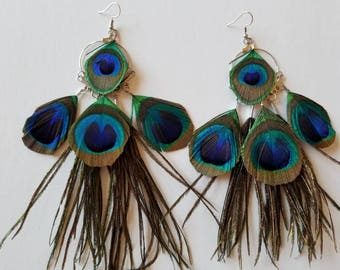 Peacock feather earrings, Peacock feather, Feather earrings, Peacock, Peacock feather jewelry.