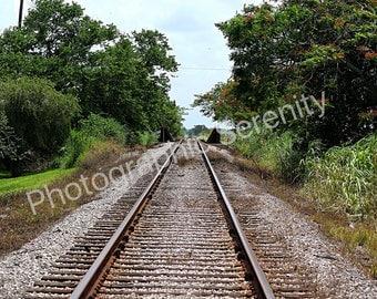 Railroad Tracks around Lake Okeechobee-Railroad-Tracks-Train-Landscape-Nature Photography-Digital Download