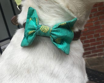 Pet Bow/ Pet Bow Tie- Teal Pineapple