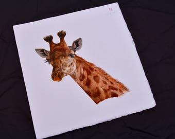 Giraffe Portrait Watercolor
