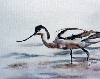 Avocet elegant watercolor and ink of China