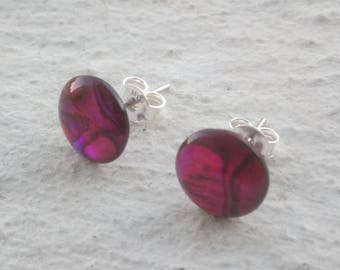 Earrings - chip mother of Pearl abalone fuchsia