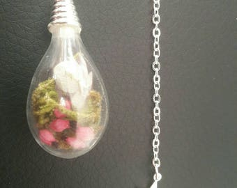 "Necklace type terrarium, ""Nature's treasure"" and a star fell from heaven."