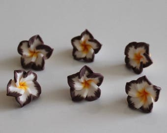 1 set of 6 flowers of Polynesia, 15 mm polymer Eggplant color, white, yellow