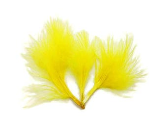 "Decorative feather ""ruffle"""